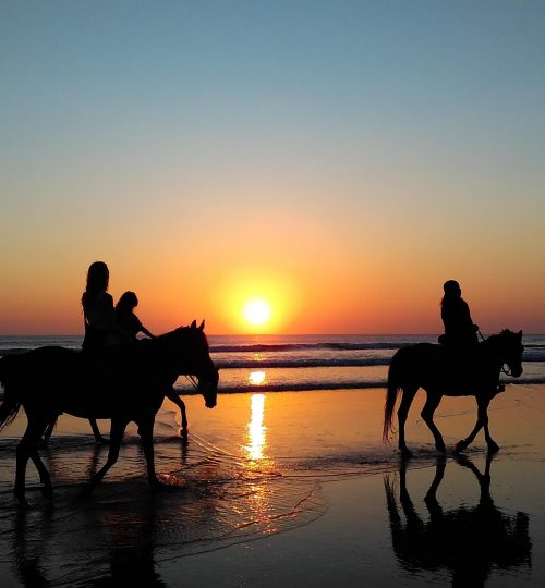 Horseback riding beach Cover
